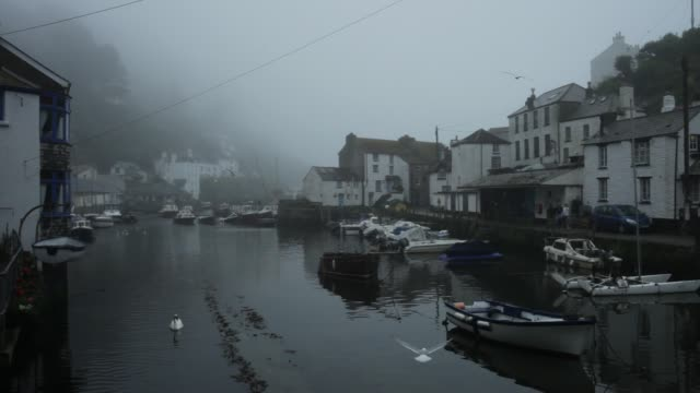 polperro harbour - tied up stock videos & royalty-free footage