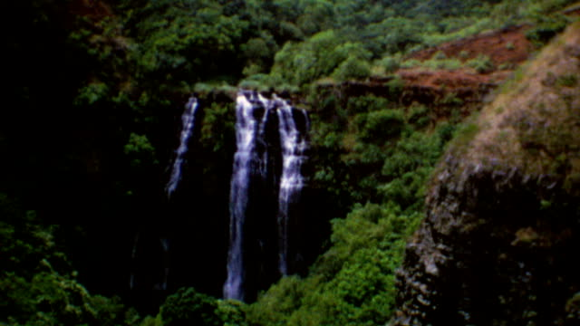 polynesian cultural center / nature scenic / water falls / cow at end / opaekaa falls on august 01 1975 in kauai hawaii - polynesian ethnicity stock videos & royalty-free footage