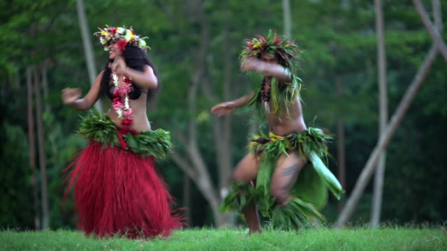 vídeos de stock e filmes b-roll de polynesian male and female dancer in traditional costume - dança da guerra