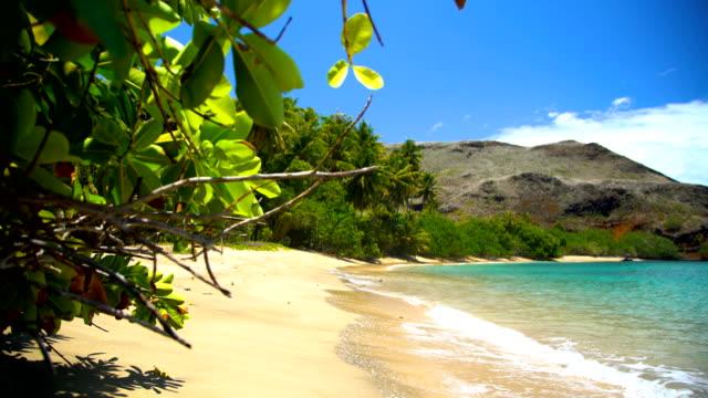 polynesian paradise atuona hiva oa ocean bay marquesas - remote location bildbanksvideor och videomaterial från bakom kulisserna
