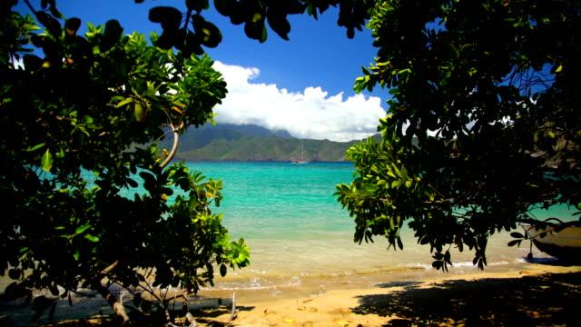 polynesian paradise tahuata deserted ocean beach marquesas pacific - remote location bildbanksvideor och videomaterial från bakom kulisserna
