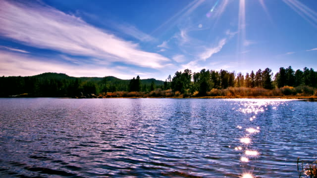 pond and sun reflection - lake stock videos & royalty-free footage