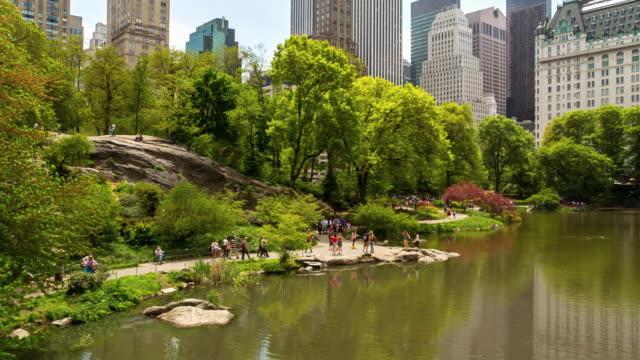 vídeos y material grabado en eventos de stock de pond in central park - central park