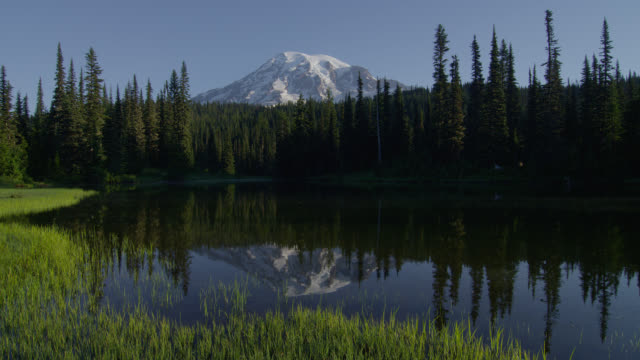 vídeos de stock e filmes b-roll de wide shot pond with reflection of mount rainier and pine forest in background - reflection