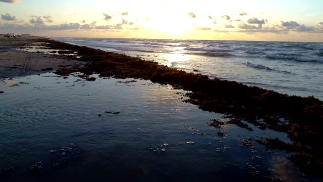 ponds of water and waves crashing on shore at golden hour padre island magical morning on the beach sunrise over the water - golden hour stock videos & royalty-free footage