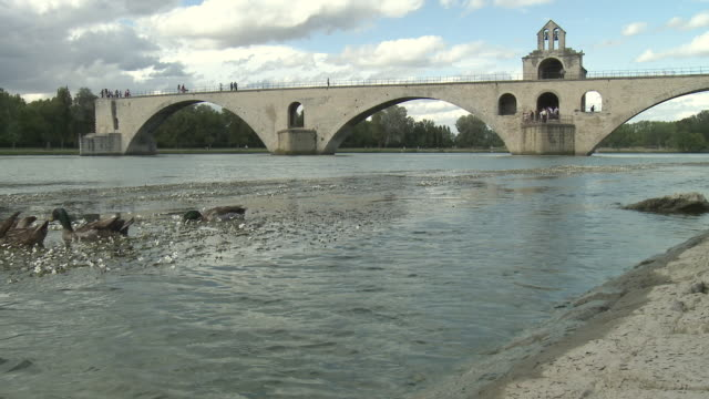 ws pont saint-benezet (pont d'avignon) with ducks on rhone river in foreground / avignon, provence-alpes-cote d'azur, france - rhone river stock videos & royalty-free footage