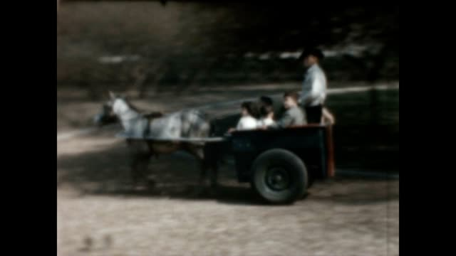 pony carriage rides in central park during the early 1960's - home movie stock videos & royalty-free footage