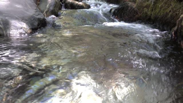 滝からの水のプール。 - 湧水点の映像素材/bロール