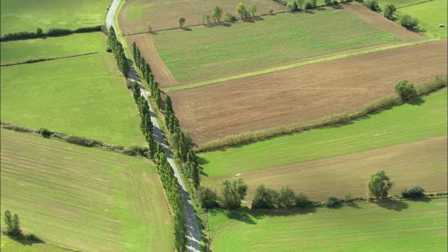 aerial ws poplar trees growing along tree lined road near fields / rhone-alpes, france - rhone alpes stock videos & royalty-free footage