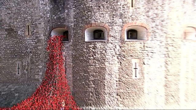 poppy installation at tower of london poppies flowing from window of tower to moat / sprinklers in middle of poppy installation / tower of london... - moat stock videos & royalty-free footage