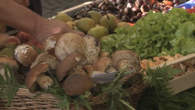 porcini mushrooms in farmers market place in italy - italian food stock videos & royalty-free footage