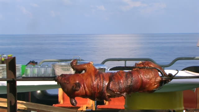 pork barbecue at the seaside - pig stock videos and b-roll footage