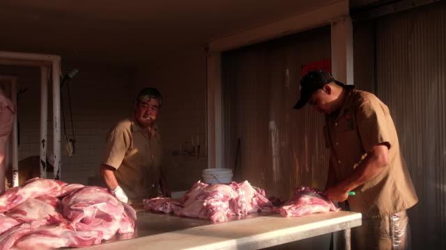 vídeos de stock, filmes e b-roll de pork meat distribution and butcher shop in san luis potosi mexico on griday june 8 2018 - local de venda a varejo