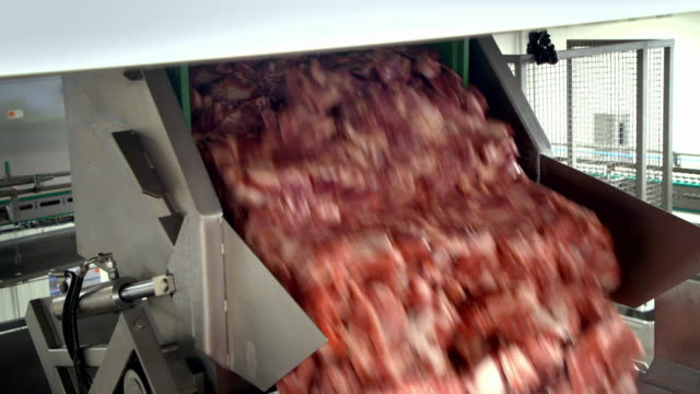 stockvideo's en b-roll-footage met pork meat processed in a pepperoni factory - lopende band
