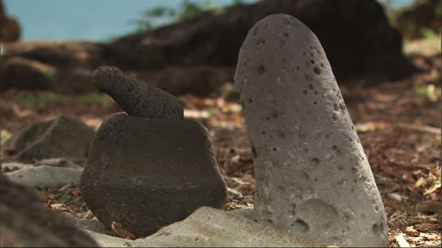 porous stone sculptures occupy the ground on waikiki beach. - porous stock videos & royalty-free footage