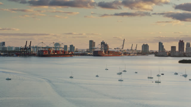 port of miami at sunrise with sailboats floating in biscayne bay - aerial - atlantic ocean stock videos & royalty-free footage