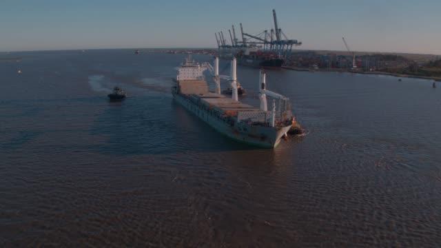 port of rio grande - cereal plant stock videos & royalty-free footage