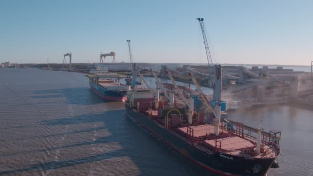 port of rio grande - soybean stock videos and b-roll footage