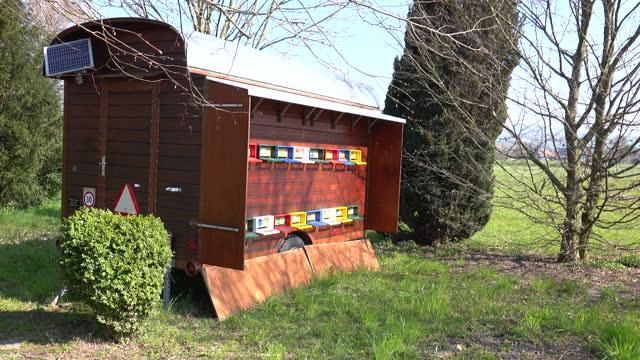 stockvideo's en b-roll-footage met draagbare bijenkorf - sunny