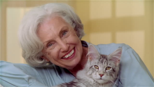 cu zi portait woman holding maine coon cat - stroking stock videos and b-roll footage
