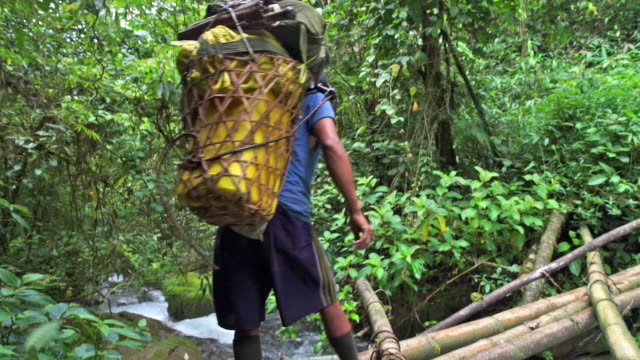 a porter carries a basket across a footbridge in a myanmar jungle - one man only stock videos & royalty-free footage