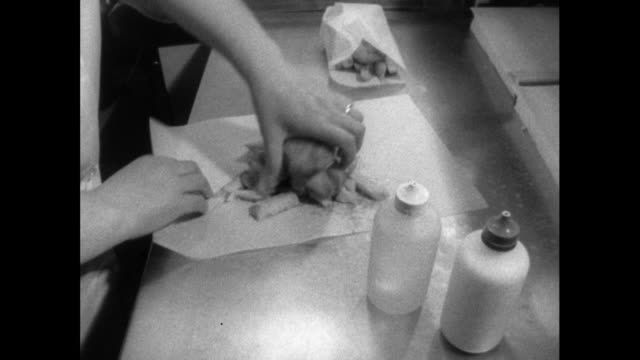 portions of fish and chips being wrapped up; 1964 - fast food stock videos & royalty-free footage