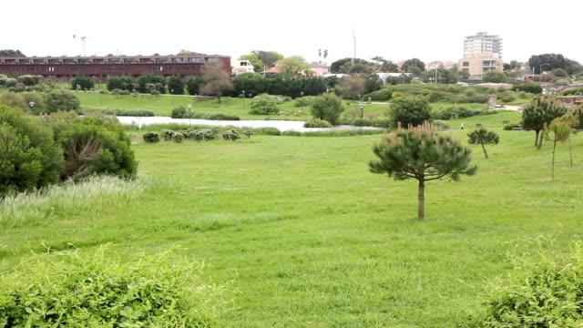 porto parque da cidade - cidade stock videos & royalty-free footage