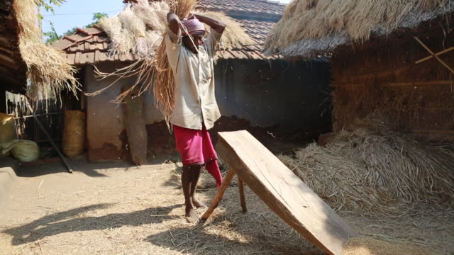 Portraet of an elderly man who is threshing straw on a wooden bench in a backyard with several shacks in the background in a rural area about 300...