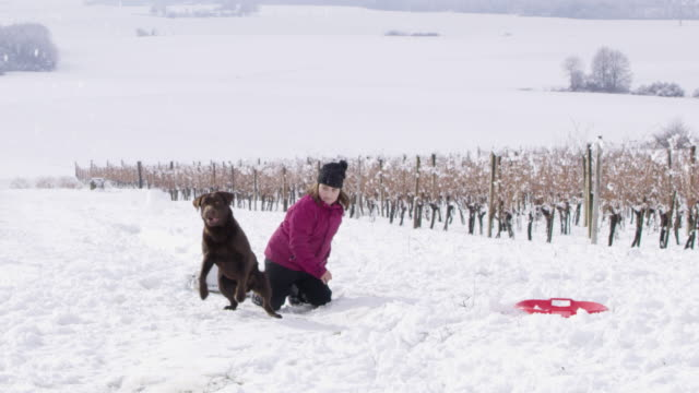 4K Portrait girl and dog playing in snowy vineyard, slow motion