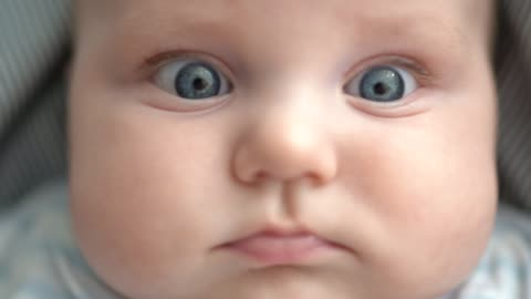 portrait of a 5 months baby at home - babies only stock videos & royalty-free footage