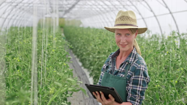 Portrait of a female farmer using a tablet in the greenhouse