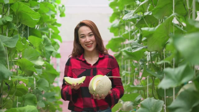 Portrait of a female framer holding harvested cantaloupe
