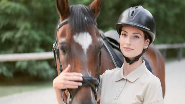slo mo portrait of a female horse rider and her bay horse - animal harness stock videos and b-roll footage