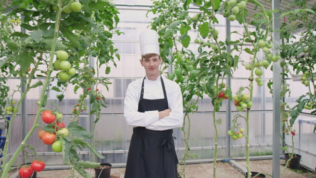 portrait of a hotel chef in organic farm - chef's hat stock videos & royalty-free footage