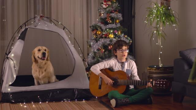 porträt eines kleinen jungen und seines hundes, gitarre spielen und gemeinsam weihnachten feiern. - zufrieden stock-videos und b-roll-filmmaterial