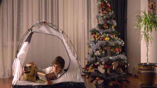 porträt eines kleinen jungen und seines hundes, lesen gemeinsam buch zu weihnachten und silvester - hundeartige stock-videos und b-roll-filmmaterial
