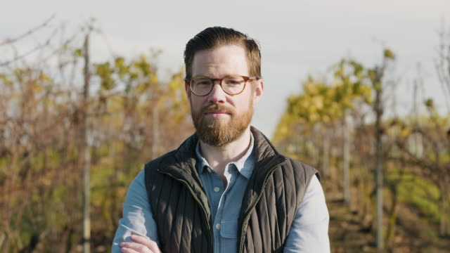 portrait of a man working at a vineyard - beard stock videos & royalty-free footage
