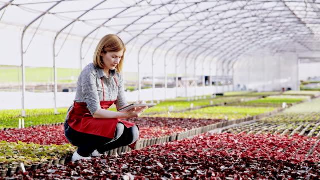 DS Portrait of a modern female florist analyzing flower growth