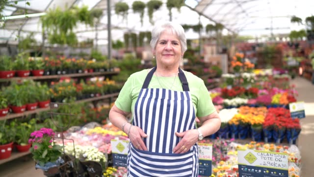 portrait of a senior florist standing in a small flower shop - caucasian appearance stock videos & royalty-free footage
