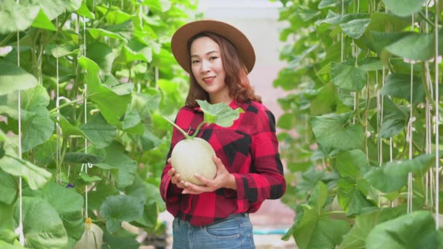 Portrait of a smiling female farmer holding cantaloupe in the hands
