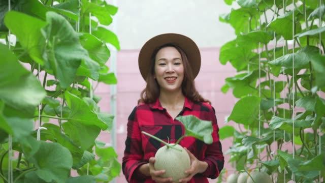 Portrait of a smiling female farmer in the farm
