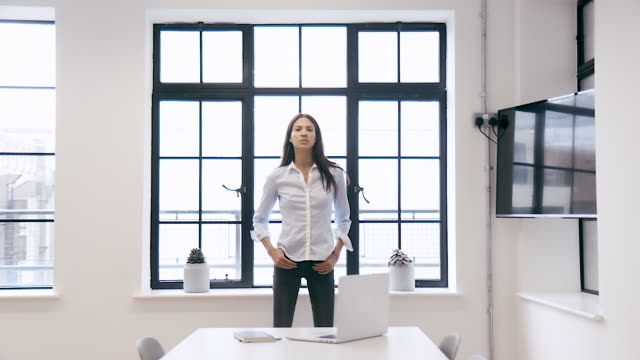 portrait of a strong female leader - uguaglianza video stock e b–roll