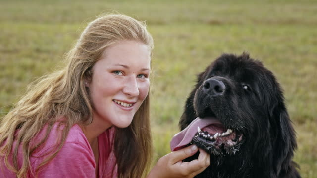 slo mo portrait of a woman and her newfoundland dog outside - teenagers only stock videos and b-roll footage