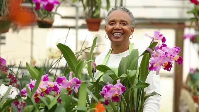 portrait of a woman in greenhouse of orchids - hoop earring stock videos and b-roll footage