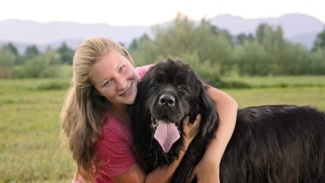 SLO MO Portrait of a woman withher Newfoundland dog in the sunny meadow