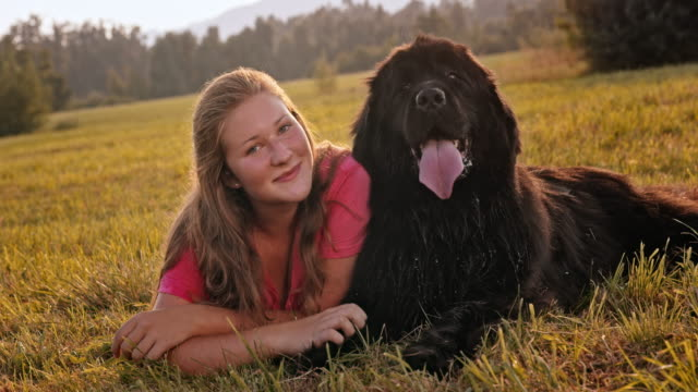 slo mo portrait of a young woman and her newfoundland dog lying in the grass - teenagers only stock videos and b-roll footage