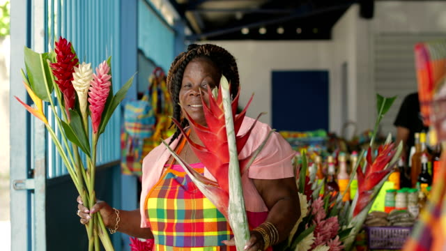 portrait of an afro-caribbean market woman in front of her market stand in martinique - アフリカ系カリブ人点の映像素材/bロール