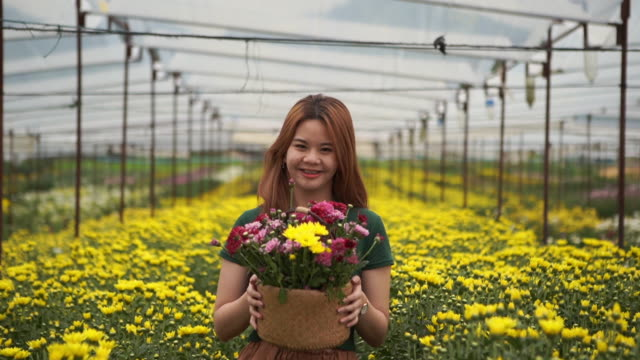 portrait of asian teenage girl in chrysanthemums flower farm , showing flower basket , welcome sign by nodding head - nodding head to music stock videos & royalty-free footage