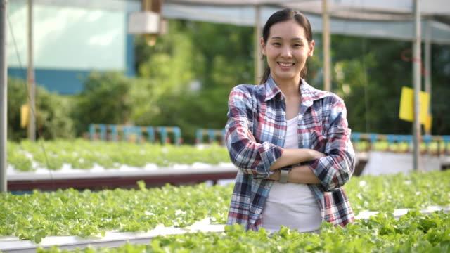 vidéos et rushes de verticale des femmes asiatiques propriétaire de la ferme hydroponique de légumes - récolter