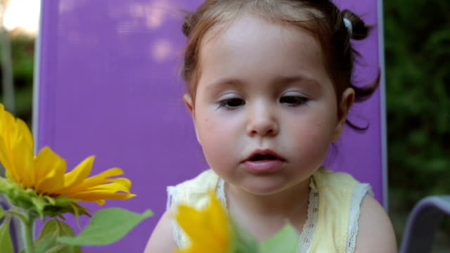 portrait of baby girl playing outdoors with sunflowers in backyard - smelling  and smiling